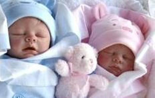 Stella's twins